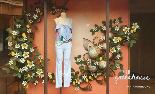 Anthropologie Window Quilling - Carmel Plaza, Carmel-By-The-Sea, California
