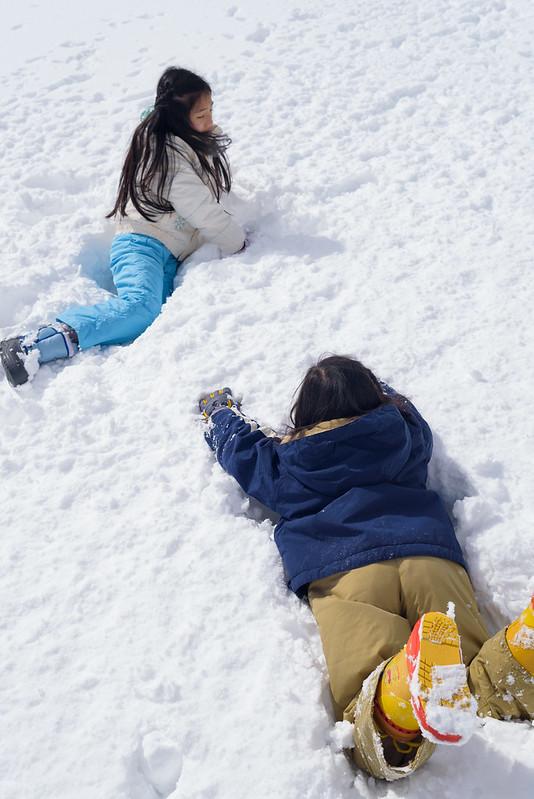 Children also dive in snowy fields.