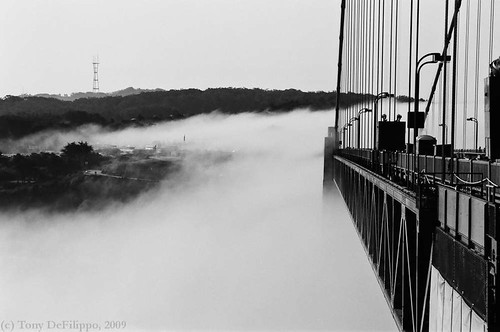 GG and Fog, film | by Tony DeFilippo