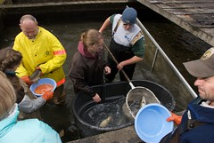 Richard Cronin National Salmon Station | by U. S. Fish and Wildlife Service - Northeast Region