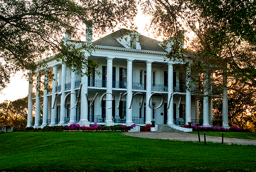 Dunleith Located In Natchez Mississippi Beautiful