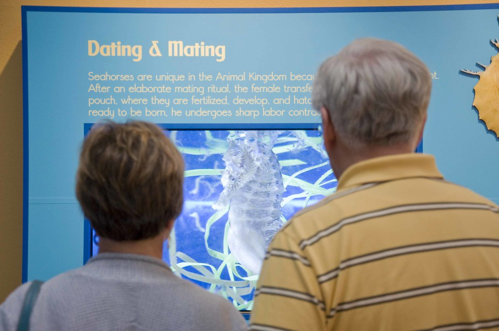 aquarium dating