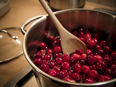 Cranberries | by owlpacino
