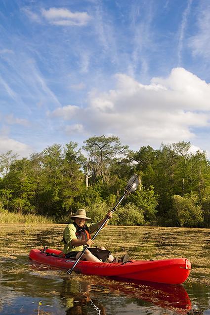A Man Paddling A Kayak On The Turner River Canoe Trail Tu