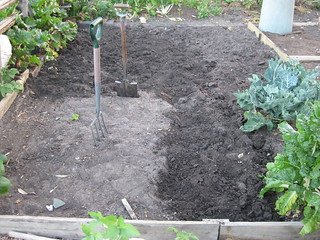 community garden soil preparation | by MakeBreadAU