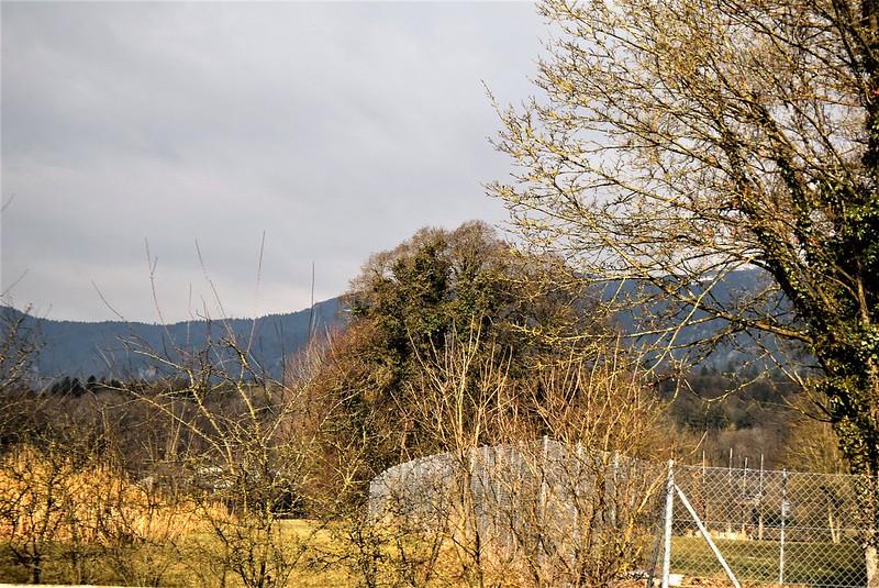 Feldbrunnen to Langendorf 20.02 (3)