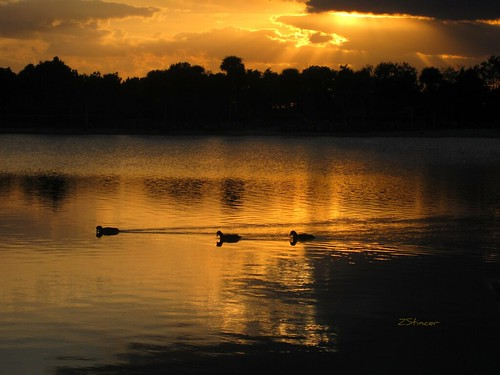 Golden Lake * | by Blanca Rosa2008 +3,900,000 Views Thanks to All