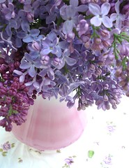 Lilacs | by such pretty things