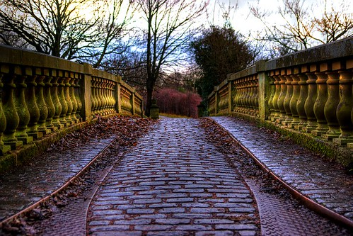 January 23rd 2010: Pollok Park Bridge | by Elad V.