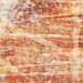 texture experiment, warm