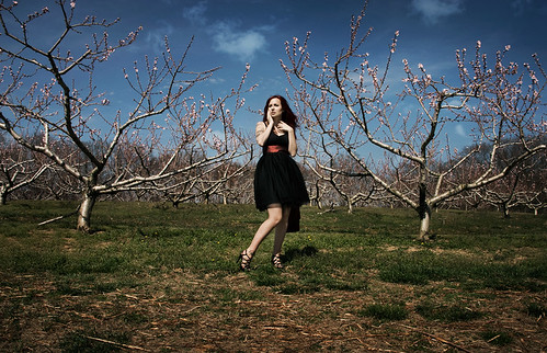 Orchards | by SAS PHOTOS