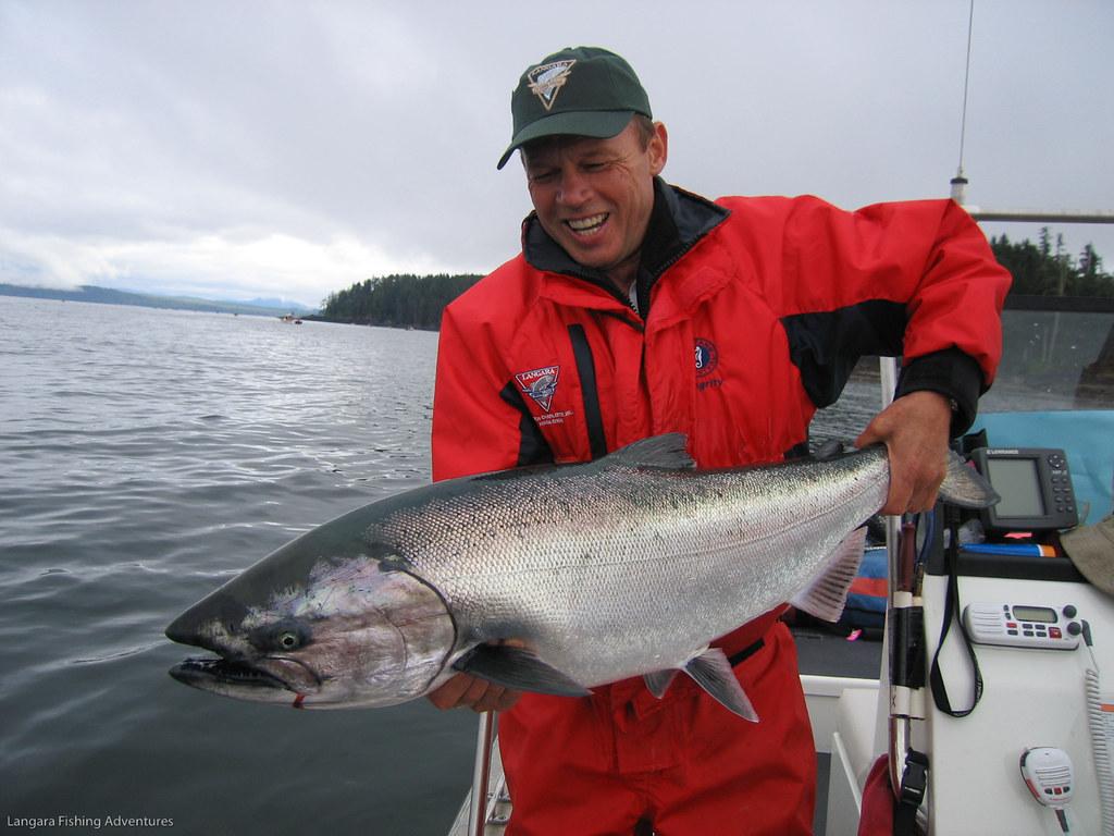 Chinook salmon at langara fishing lodge world famous for Langara fishing lodge