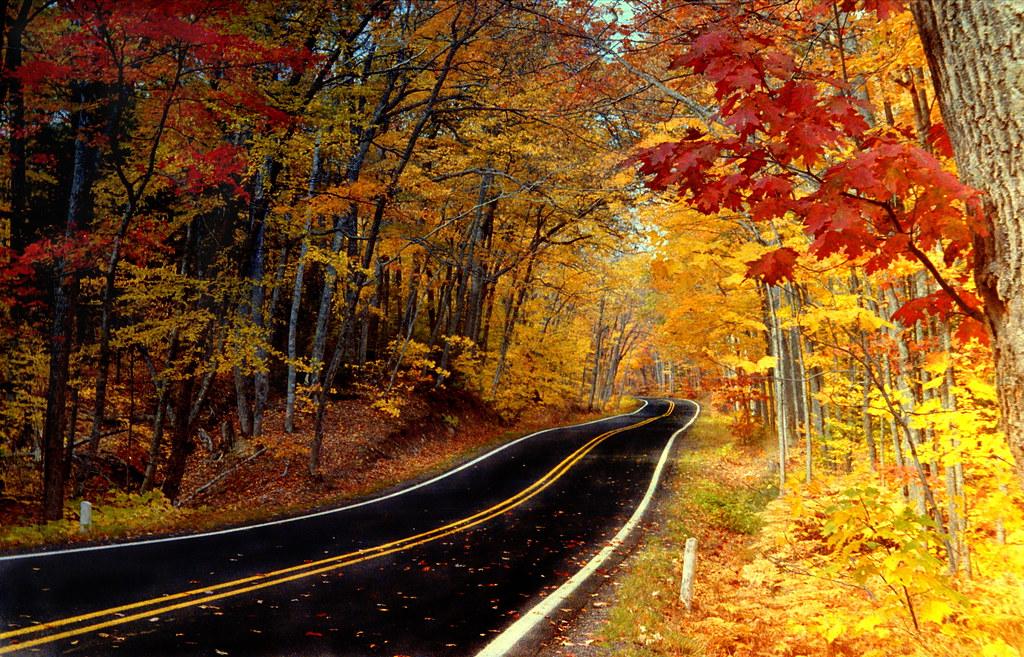 Autumn Copper Harbor By Brian Callahan Luxgnos Com