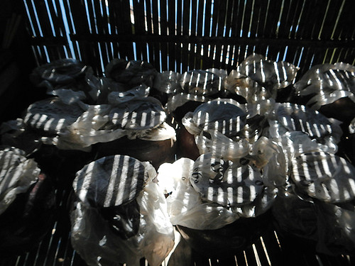 Rice wine in the shadows on Inle Lake, Myanmar
