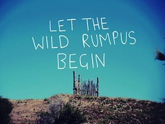 LET THE WILD RUMPUS BEGIN! | by llymlrs