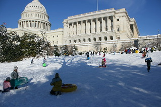 sledding on the capitol lawn | by absentmindedprof