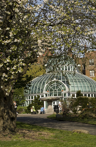The palm house in brooklyn botanic garden brooklyn new y - Hotels near brooklyn botanical garden ...