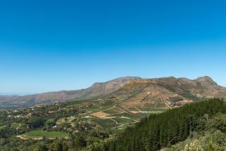 Weingüter und Weinberge und von Constantia