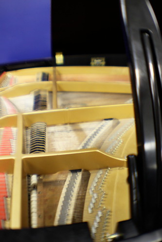 Inside of Grand Piano | by Crowder College Photo Project