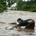 Traditional Lao fishing with a dip net