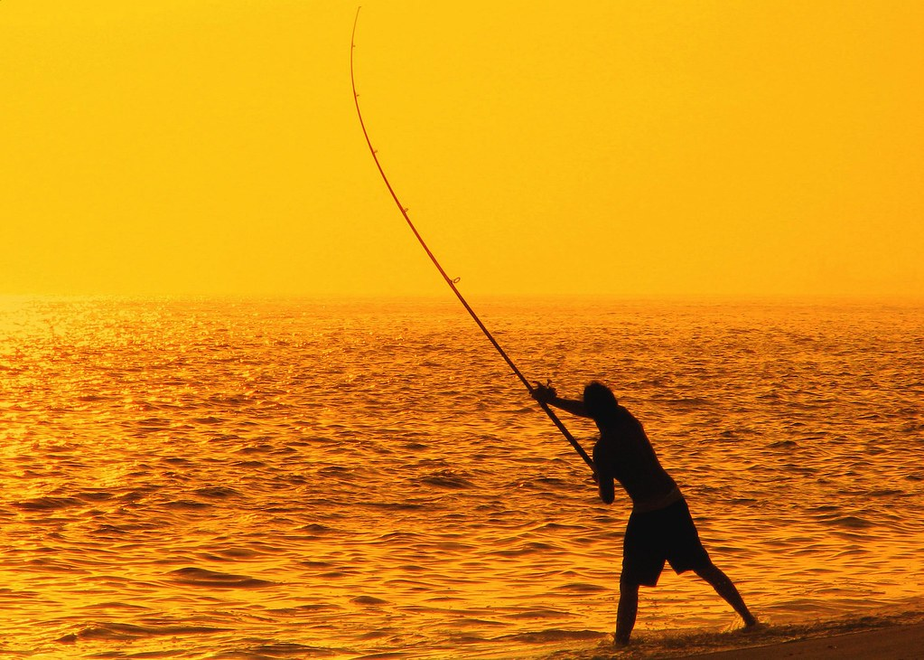 Sunny fisherman i 39 m gone fishing sounds crazy i for Crazy fishing vr