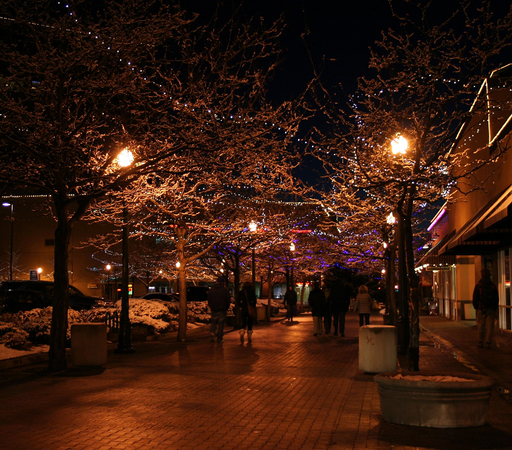Boise Grove Christmas winter lights