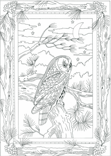 Galerry nature coloring pages for adults