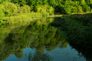 20150906-54_Lathkill Dale Relections