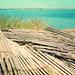 Nantucket Dreams