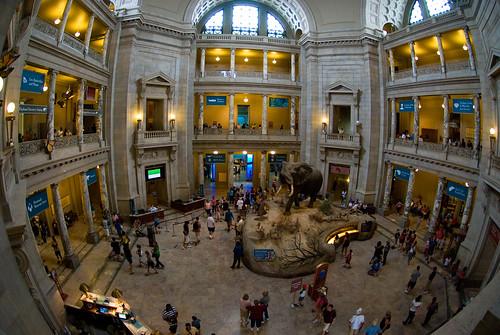 Natural History Museum Dc Rotunda