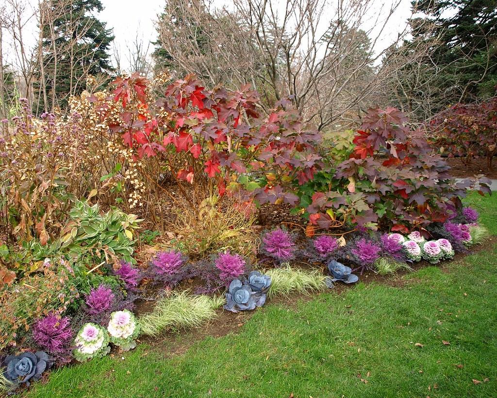Merveilleux ... Home Gardening Center, New York Botanical Garden, Bronx NYC   By Jag9889