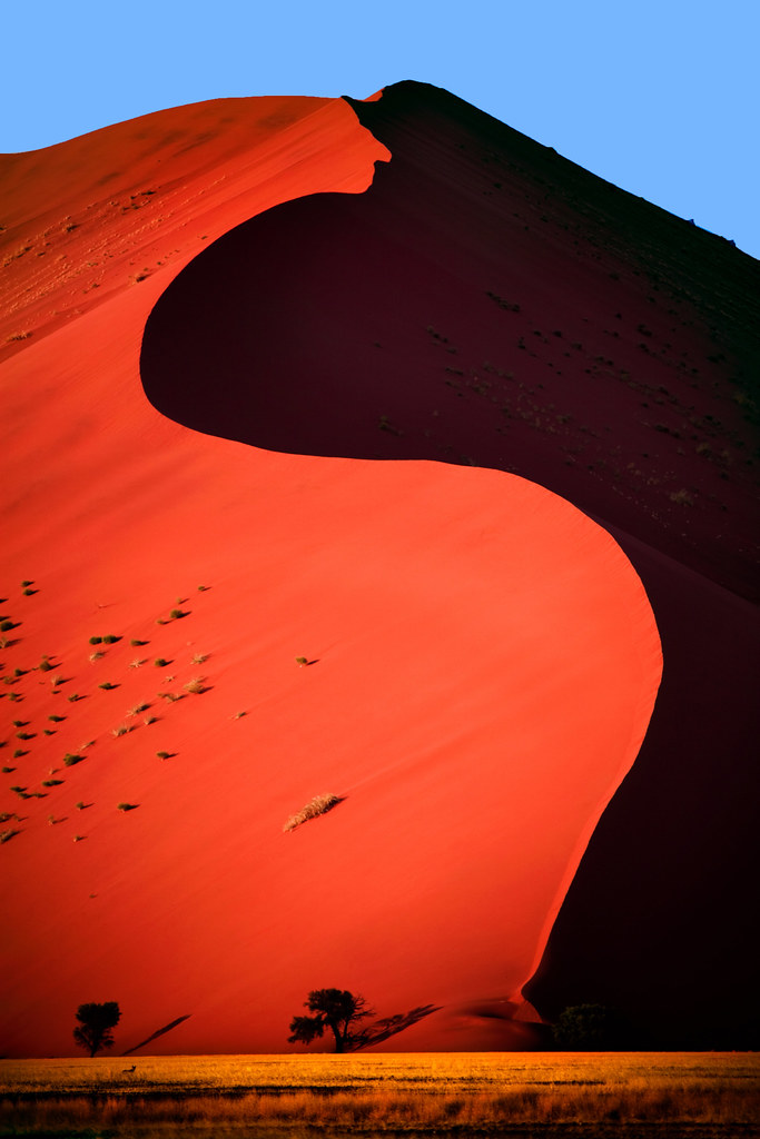 Dune 45 Dune 45 In Sossusvlei Is One Of The Most