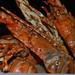 Sofitel lobster