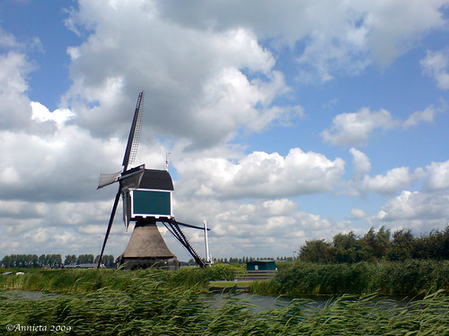 Pure Dutch... | by ♥ Annieta 