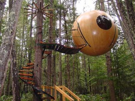 Tree Houses Vancouver Island