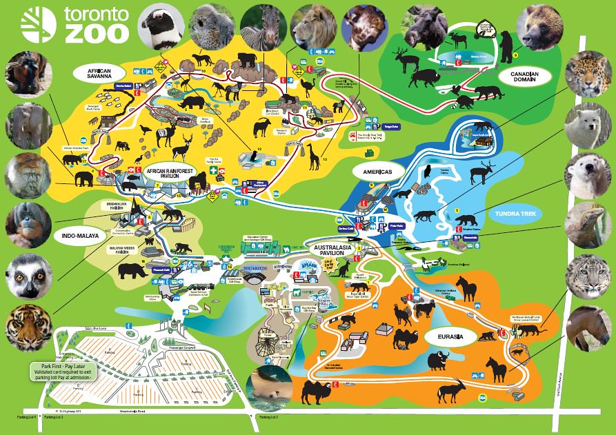 Toronto Zoo Map Anthony Godinho Flickr