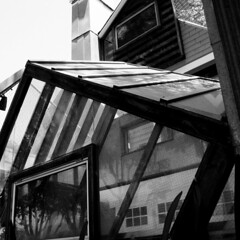 gehry house detail
