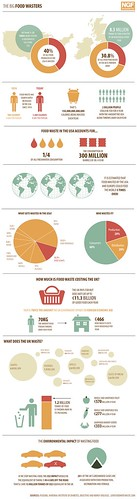 The Big Food Wasters | by GDS Infographics