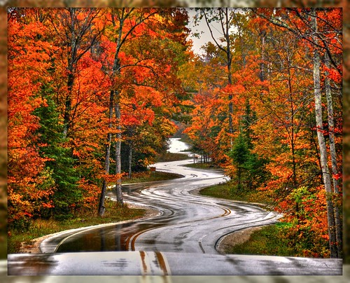 Northport Road After The Rain | by DMoutray - Denny Moutray Photography
