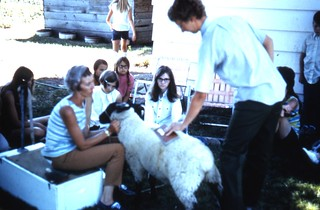 Lake County 4-H sheep club meeting | by OSU Special Collections & Archives : Commons
