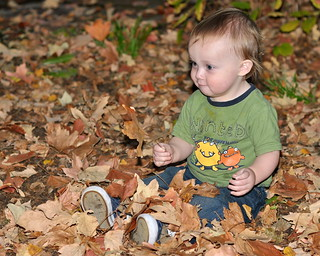 Aidan in yet another leaf pile | by matthew_culbertson