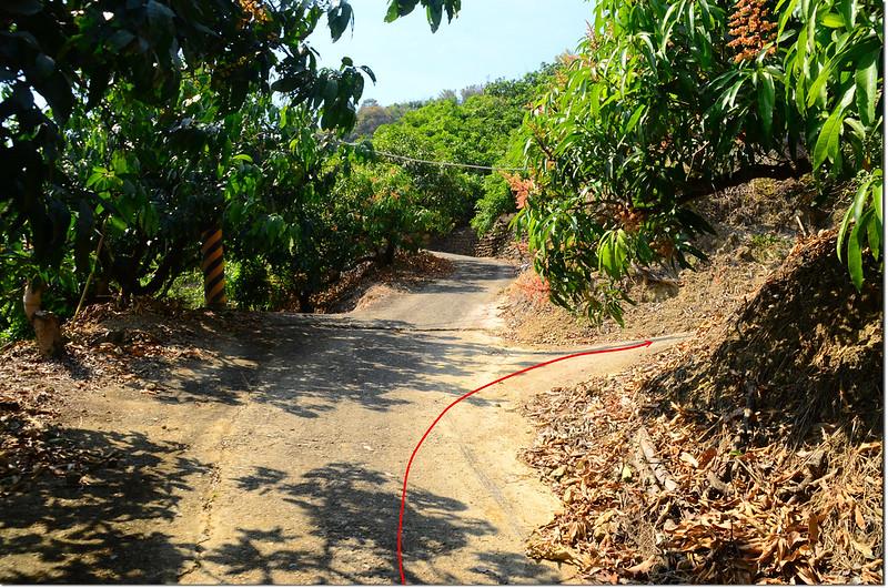 北坑仔內登山路徑岔