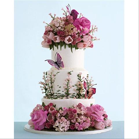 NY Cake Designer