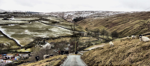 Yorkshire Dales | by Helen Olney