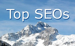 Top SEOs - On Top Of The Heap | by Si1very