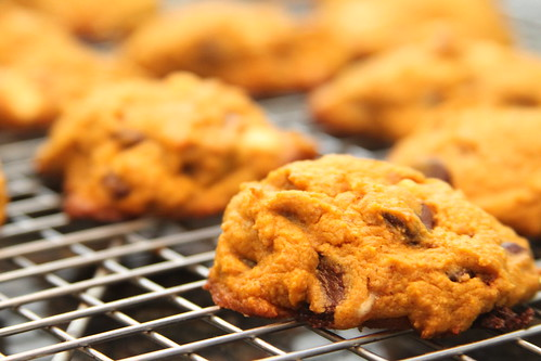 Pumpkin chocolate chip cookies | by Gudlyf