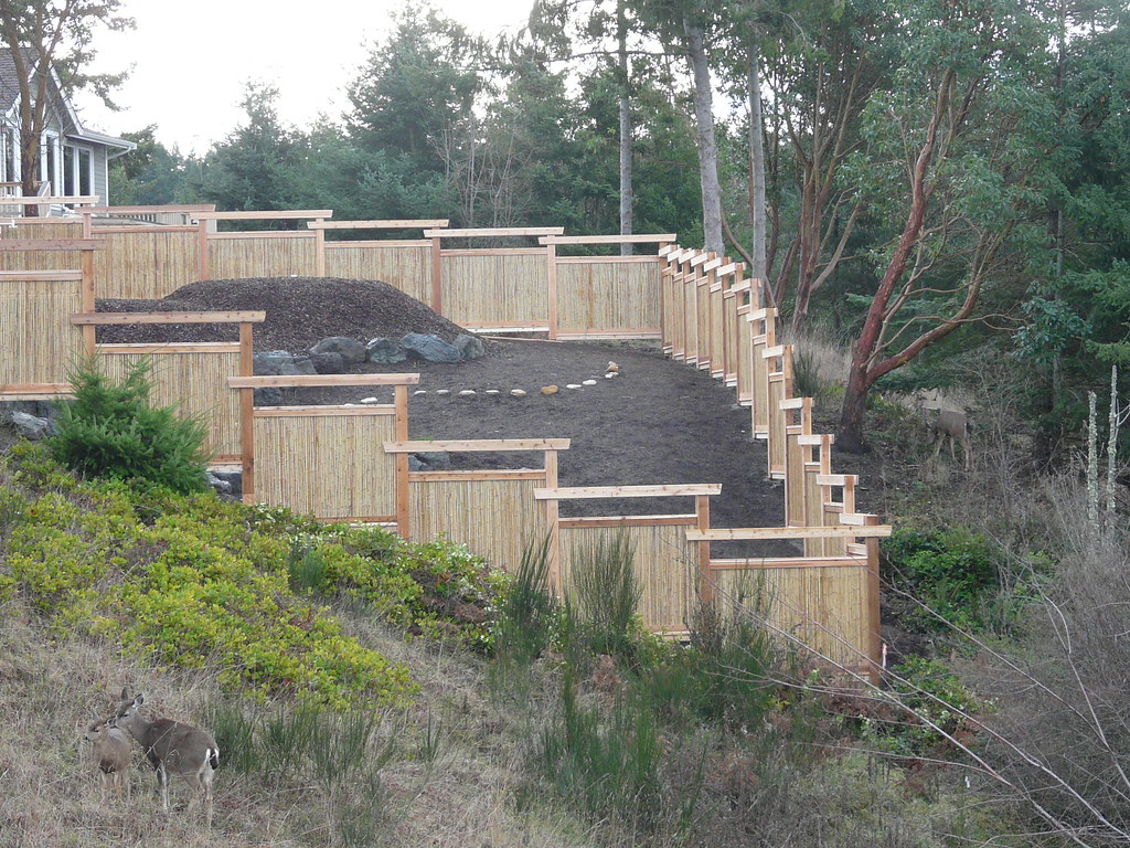 Consider bamboo comparable in price to clear grade cedar
