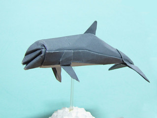 Origami Bottlenose Dolphin | by Syahmir