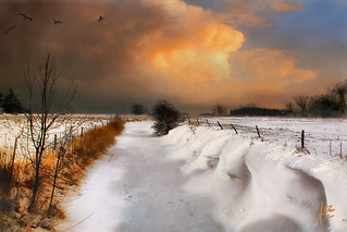 ........next snow is  on its way | by jmb_germany