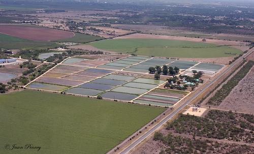 National fish hatchery uvalde texas i was flying over for Fish hatchery jobs